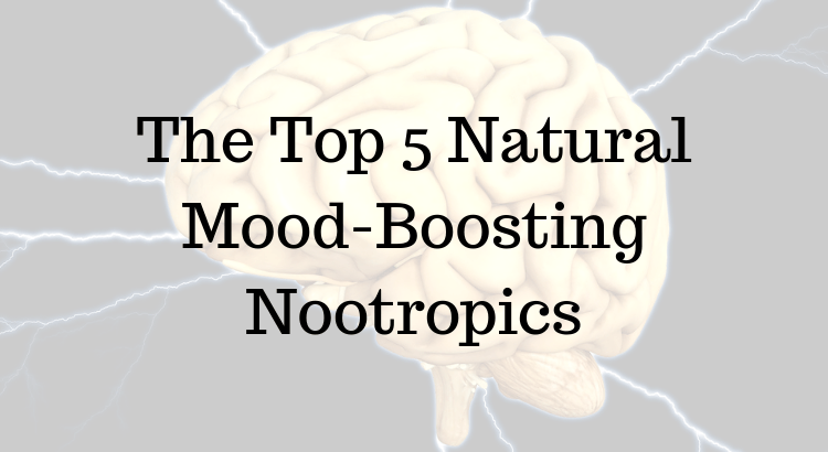 9 Nootropics You Can Buy From Amazon - Nootropics Zone